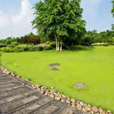 Landscape-Gardening